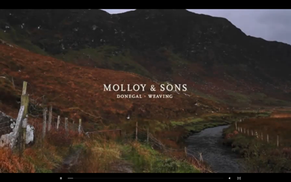 NOWNESS molloy&sons